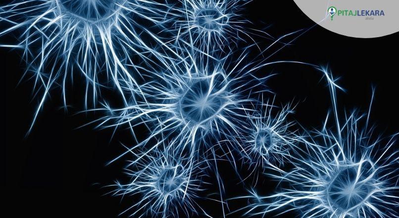 zdrav mozak . kako poboljšati zdravlje mozga .